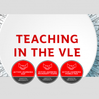 Teaching in the VLE (Virtual Learning Environment)
