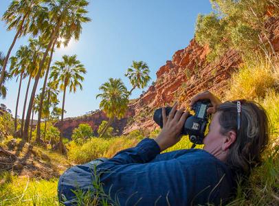 Steve Parish Online Masterclass - Photography a Pathway to Purpose