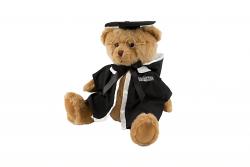 Graduation Bear Masters - Product Code 160003